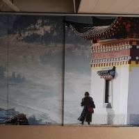 Afbeelding van Schuifdeuren met print en rail