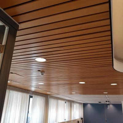 Plafondlatten