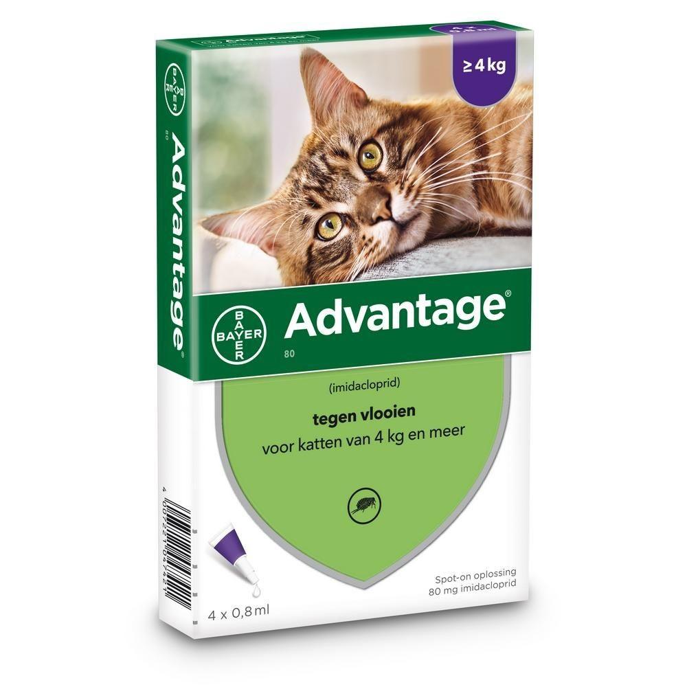 Bayer Advantage 80 voor katten vanaf 4kg