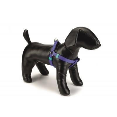 Foto van Honden borsttuig Uni nylon Beeztees blauw