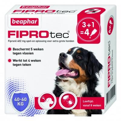 Foto van Beaphar Fiprotec hond vlooien/teken 40-60kg 4 pipet