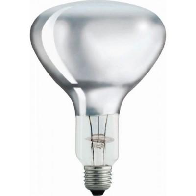 Foto van Warmtelamp / infrarood lamp Philips 250Watt wit 10 stuks