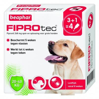 Foto van Beaphar Fiprotec hond vlooien/teken 20-40kg 4 pipet