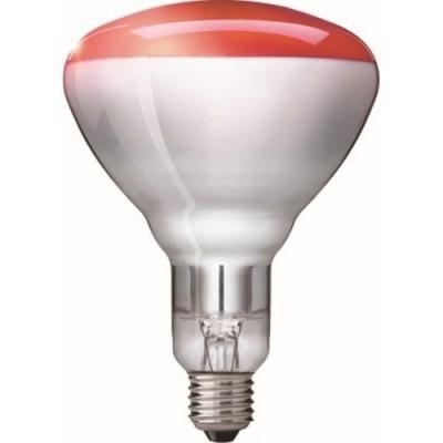 Foto van Warmtelamp / infrarood lamp Philips 150Watt 10 stuks