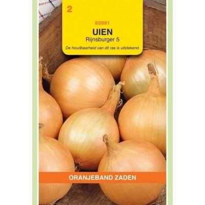 Foto van Uien Rijnsburger 5 Oranjeband