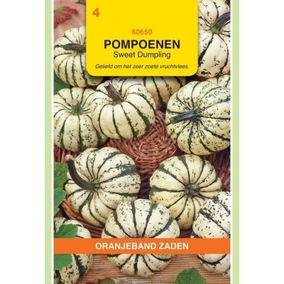 Foto van Pompoenen Sweet Dumpling Oranjeband