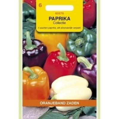Foto van Paprika 5 kleuren Collectie. Oranjeband