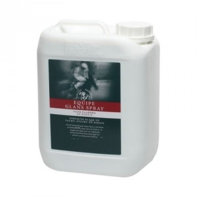 Foto van Grandnational Equipe Gloss glansspray 5ltr