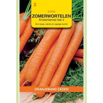 Foto van Zomerwortelen Amsterdamse Bak Oranjeband