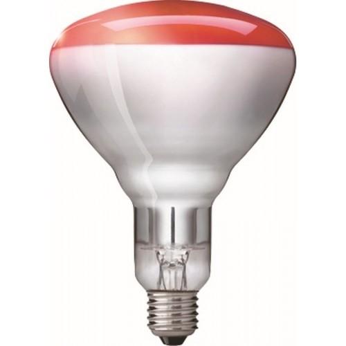 Warmtelamp / infrarood lamp Philips 150Watt 10 stuks