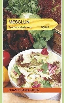 Mesclun Franse Salade Mix Oranjeband