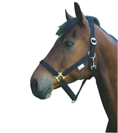 Paarden / pony halster nylon Classic zwart