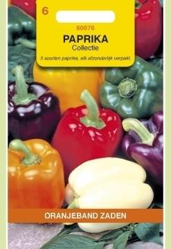 Paprika 5 kleuren Collectie. Oranjeband