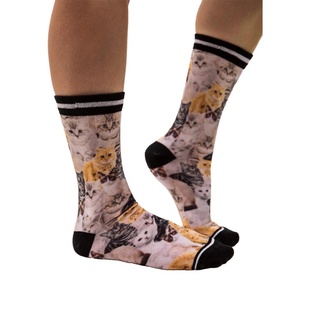 Sock My Feet Cat