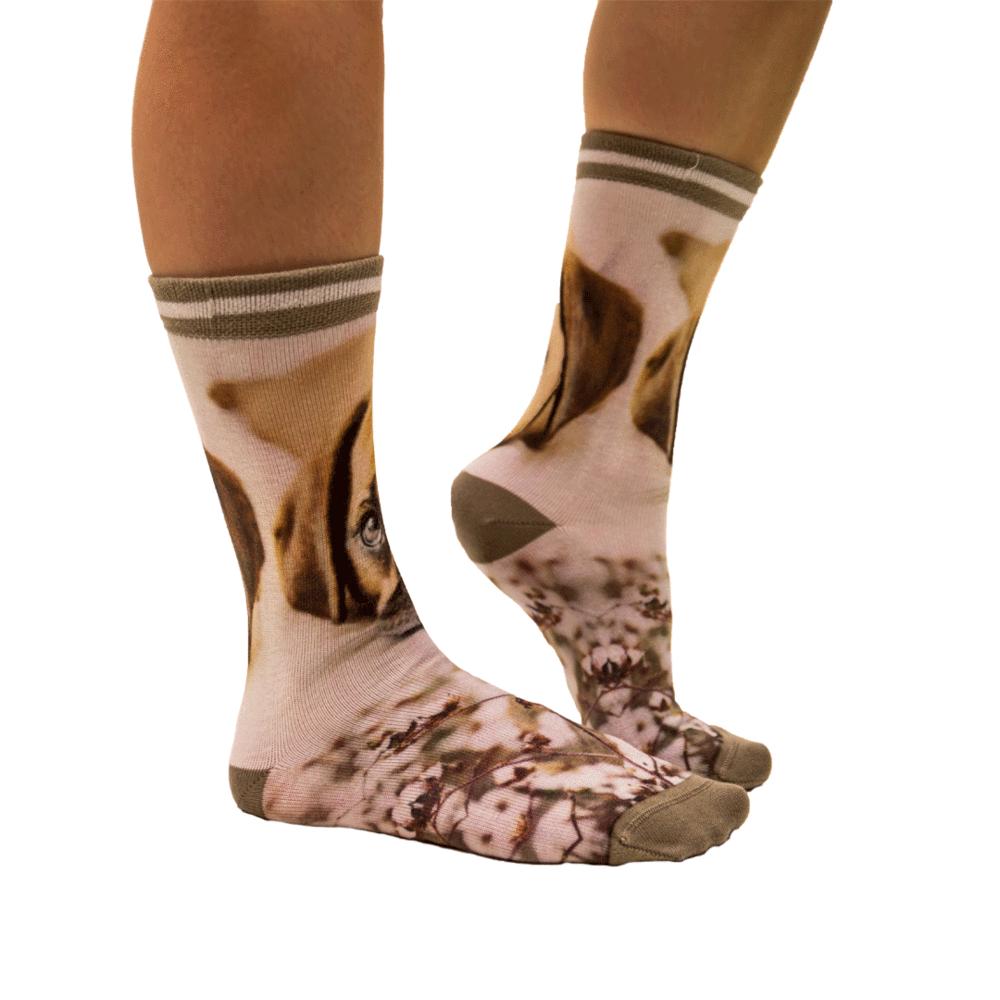 Sock My Feet Puppy