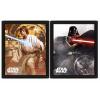 Afbeelding van Star Wars Framed Poster Vader Vs Skywalker 3D Lenticular 20 x 25cm
