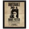 Afbeelding van Harry Potter (Potter Sirius) Framed 10X8 3D