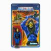 Afbeelding van MOTU: Skeletor Limited Edition Leo Color ReAction Figure