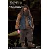 Afbeelding van Harry Potter: Rubeus Hagrid 1:6 Scale Figure