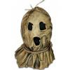 Afbeelding van Dark Night of the Scarecrow: Bubba Mask