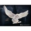 Afbeelding van Harry Potter: Hedwig Owl Post Wall Decor