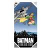Afbeelding van The Dark Knight Returns: Batman and Robin Glass Poster