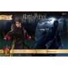 Afbeelding van Harry Potter: Dementor with Harry Potter 1:8 Scale Twin Pack