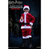 Afbeelding van Harry Potter My Favourite Movie figurine 1/6 Harry (Child) XMAS Version 25 cm