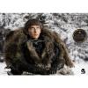 Afbeelding van Game of Thrones: Deluxe Bran Stark 1:6 Scale Figure