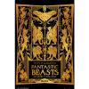 Afbeelding van Fantastic Beasts 2: Book Cover 92 x 61 cm Poster