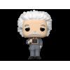 Afbeelding van POP Icons: Albert Einstein