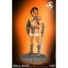 Afbeelding van Wake: Navis the Warrior 11 inch Statue