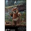 Afbeelding van Star Wars: Return of the Jedi - Wicket 1:6 Scale Figure