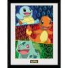 Afbeelding van Pokemon: Starters Glow Collector Print
