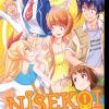 Afbeelding van NISEKOI FALSE LOVE GN VOL 22