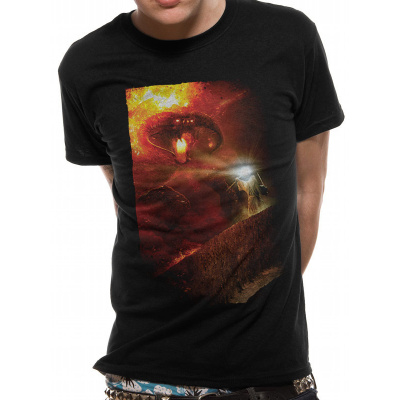 LORD OF THE RINGS - YOU SHALL NOT PASS T-Shirt BLACK
