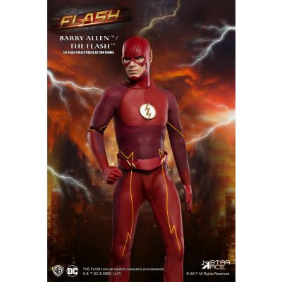 DC Comics: The Flash TV Series - The Flash Action Figure