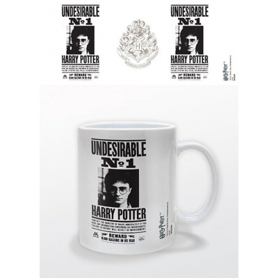 HARRY POTTER - Mug - 300 ml - Undesirable