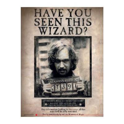 Harry Potter Glass poster Sirius 30 x 40 cm