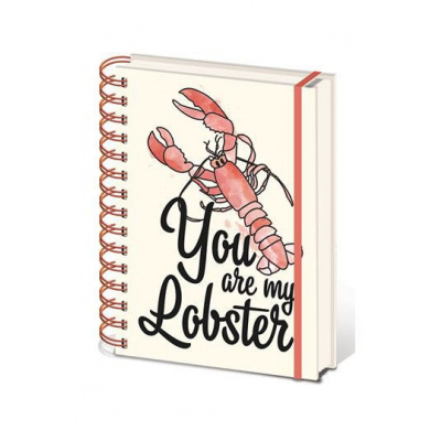 Friends Spiral Bound A5 Notebook Notepad Pad You Are My Lobster
