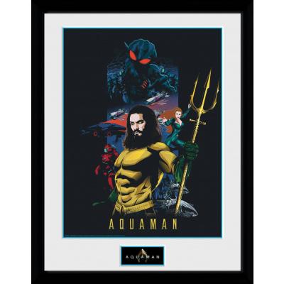 DC Comics: Aquaman Compilation Collector Print