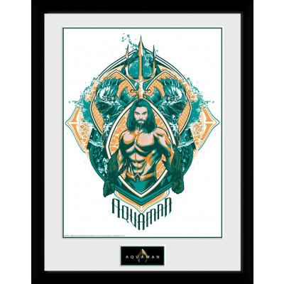DC Comics: Aquaman Crest Collector Print