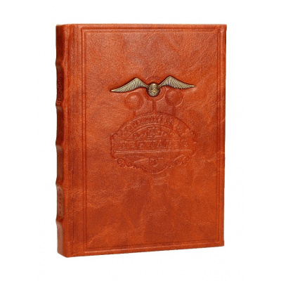Harry Potter: Relief Quidditch Notebook