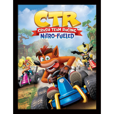 Crash Team Racing: N. Sanity Beach 30 x 40 cm Framed Print
