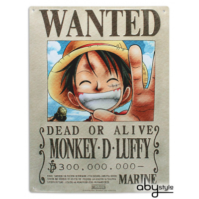 ONE PIECE - Metal plate