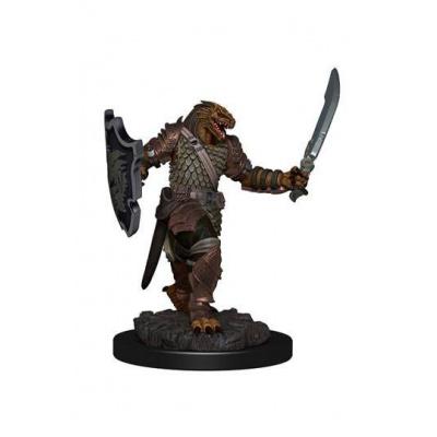 D&D Icons of the Realms miniature Premium prepaint Dragonborn Female Paladin
