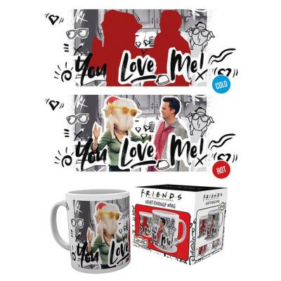 Friends: You Love Me Heat Change Mug
