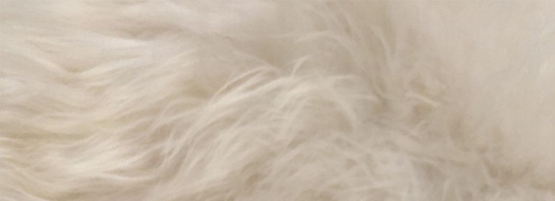 IJslands schapenvacht wit