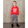 Afbeelding van Sturdy boys sweater red