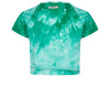 Afbeelding van Indian blue jeans tie dye shirt green